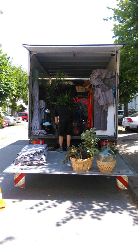 Thietke Umzüge, Umzug mit Pflanzen
